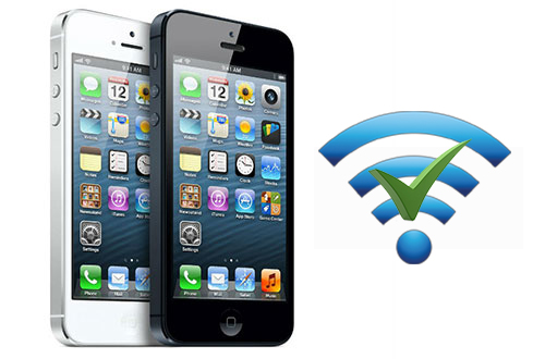 IP Address Conflict on iPhone and Mac