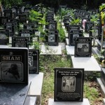 Where to bury dead pets in Bangalore